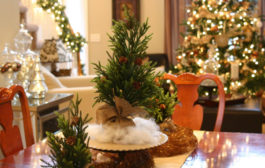 Despre Ornamente si Craciun