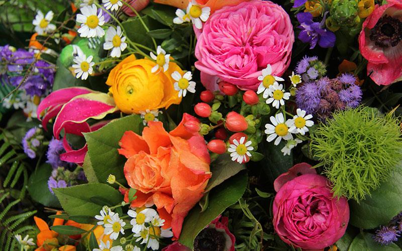 Cat de important este sa oferi flori