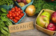 Ce sunt alimentele ecologice?